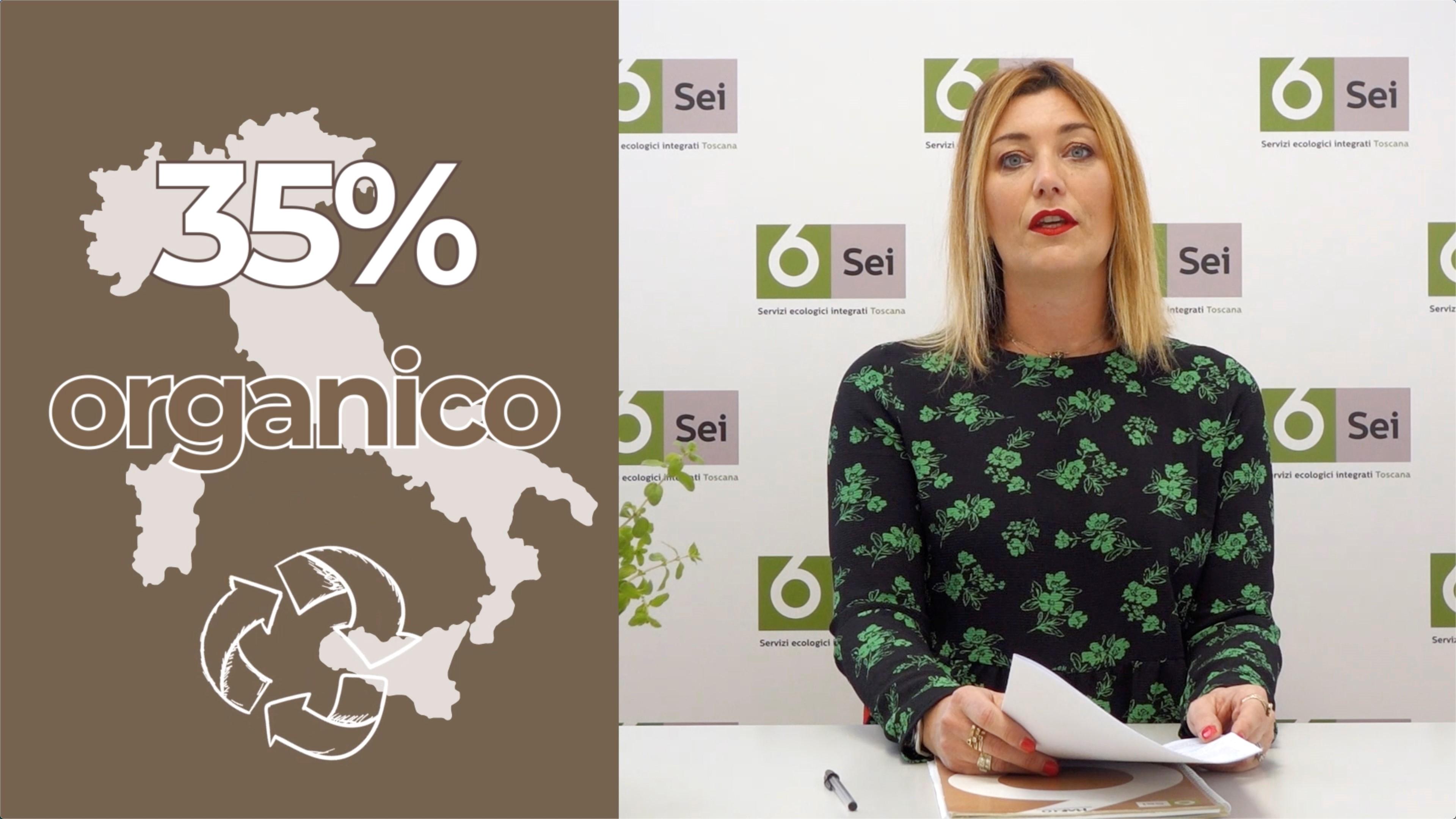 6News - L'organico